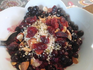 Blueberry Quinoa Breakfast Porridge