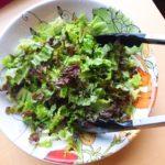 Simple Green Salad (Low FODMAP, Paleo)
