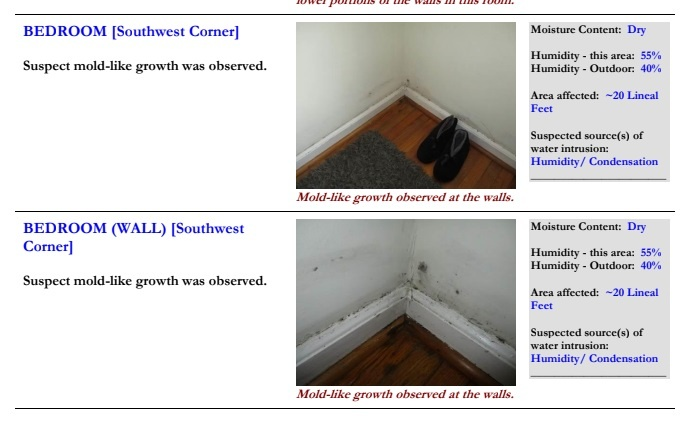 Photos and description of mold growth in bedroom
